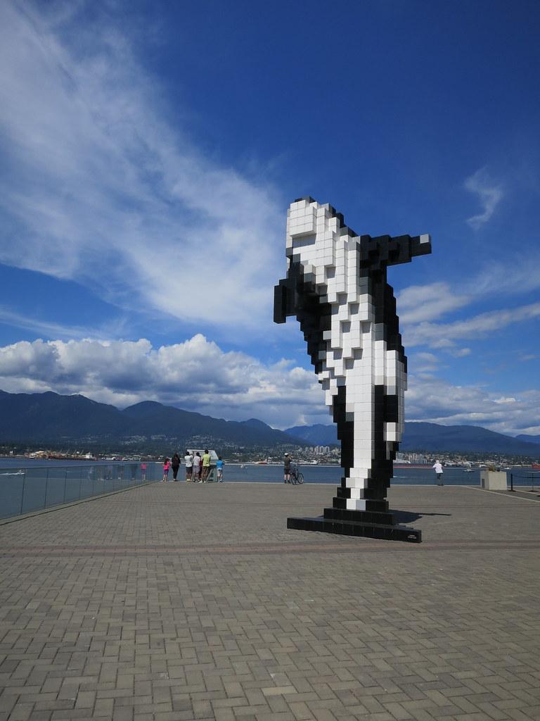 Digital Orca Vancouver BC