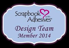 SABY3L_Design-team-member-2013_zpse3865670