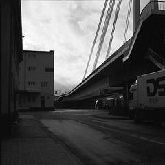 Hafentour Mannheim