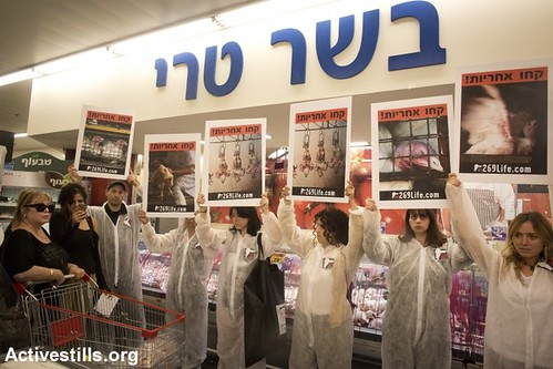 Animal Rights Direct Action, Tel Aviv 7.11.2013 by activestills