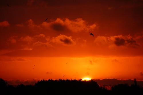 cloud sun holland sunrise landscape day cloudy sony nederland wolken zon landschap wolk gelderland zonsopkomst nieuwaal