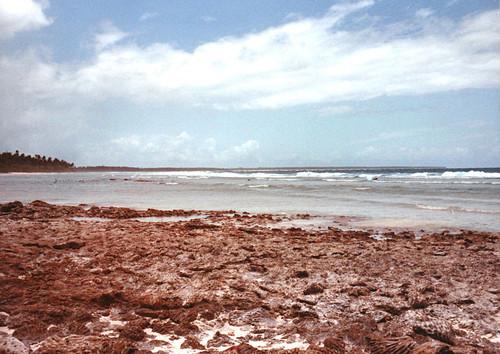 diegogarcia atoll biot britishindianoceanterritory