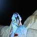 Cabalgata de Reyes Magos Madrid 2014 (10)