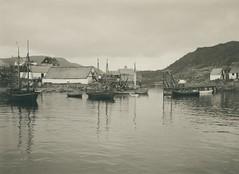 Qaqortoq Town (Julianehåb)
