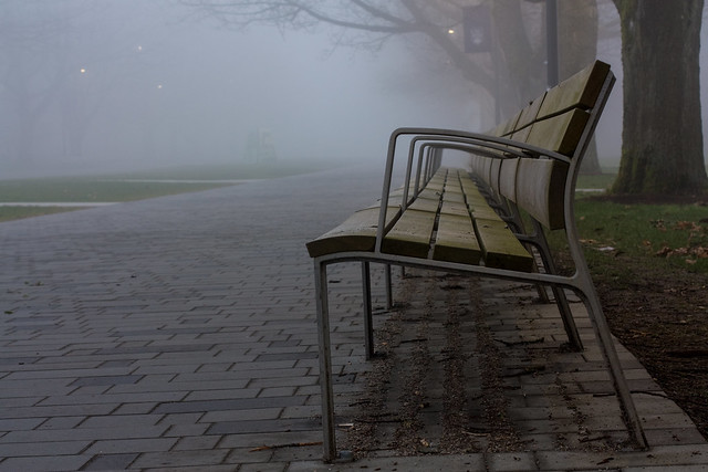 A Foggy evening at UBC
