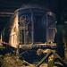 Grand Central Terminal - Franklin Delano Roosevelt's Secret Train by Vivienne Gucwa