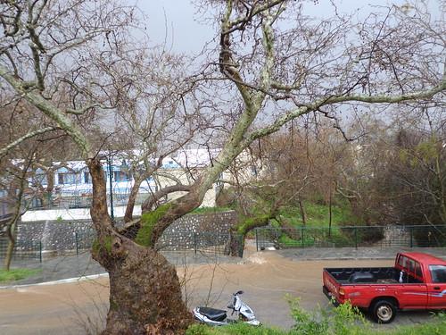 Με βροχή οι πρώτες μέρες της Άνοιξης στη Ψίνθο