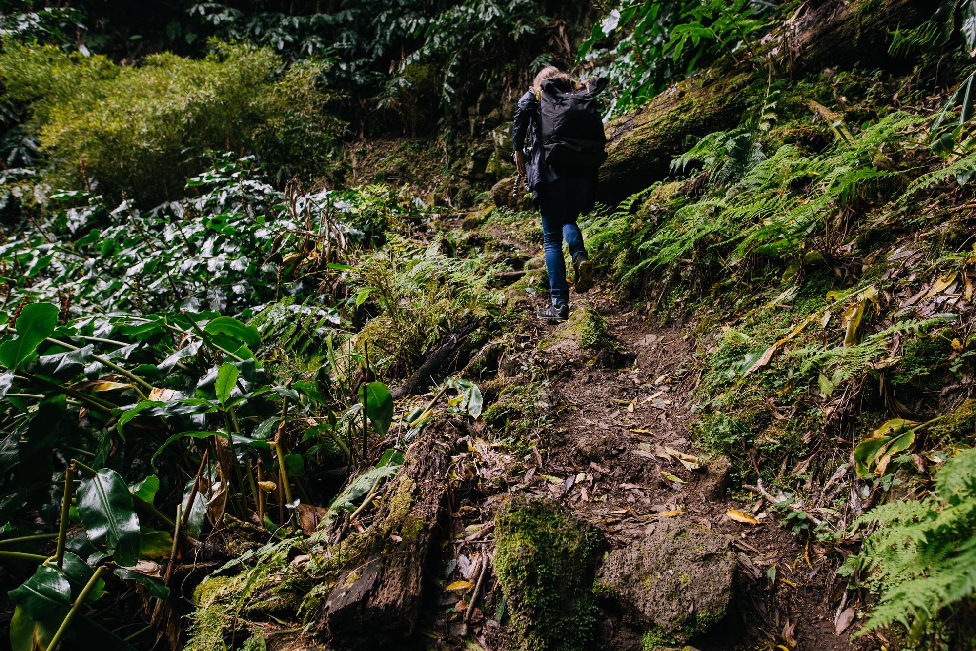 Faial de Terra túraösvény Sao Miguel szigetén