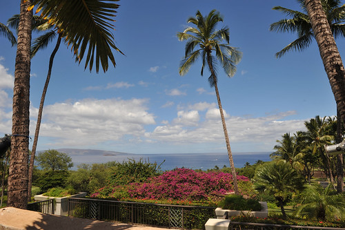 001_Gannons-a-pacific-view-restraunt-sean-m-hower_mauitime