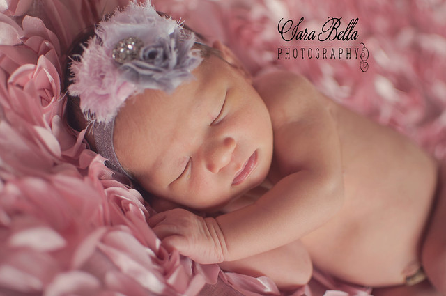 5-21-2013 Sydney Newborn Pictures (9)web