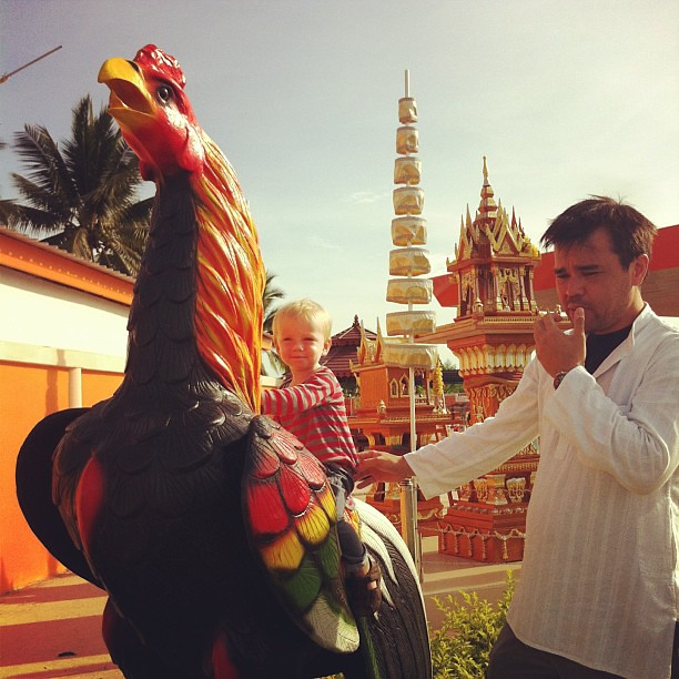 Road stop rooster pose on the road to BKK #thailand #roadtrip