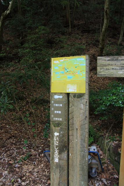 20130910岩湧山0013
