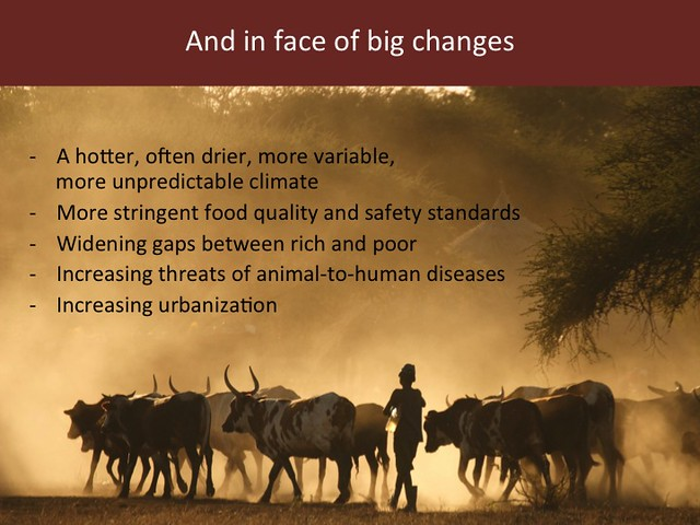 Feeding the World in 2050: Slide 8
