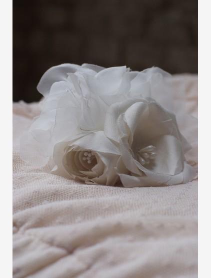 viragzo-magnolia04