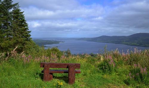 view seat killaloe loughderg eastclareway ballycuggaranforest