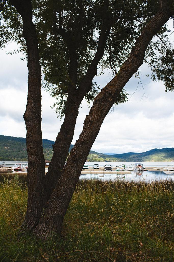Montana2013_-44