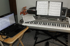 player piano(0.0), string instrument(0.0), synthesizer(1.0), personal computer hardware(1.0), keyboard player(1.0), piano(1.0), musical keyboard(1.0), keyboard(1.0), electronic musical instrument(1.0), electronic keyboard(1.0), electric piano(1.0), digital piano(1.0), computer hardware(1.0), electronic instrument(1.0),