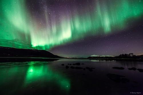 Northern Lights: Nov 6 2013 Aurora over Roksøyfjord, Sortland, Norway.