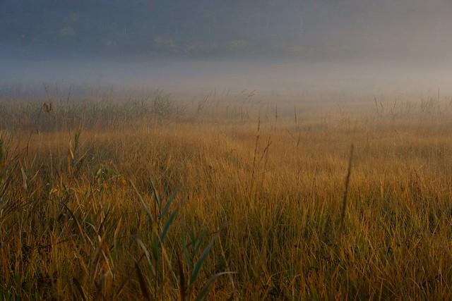写真_霧の向こう側