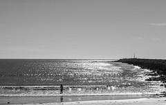 Spit Beach, Aramoana