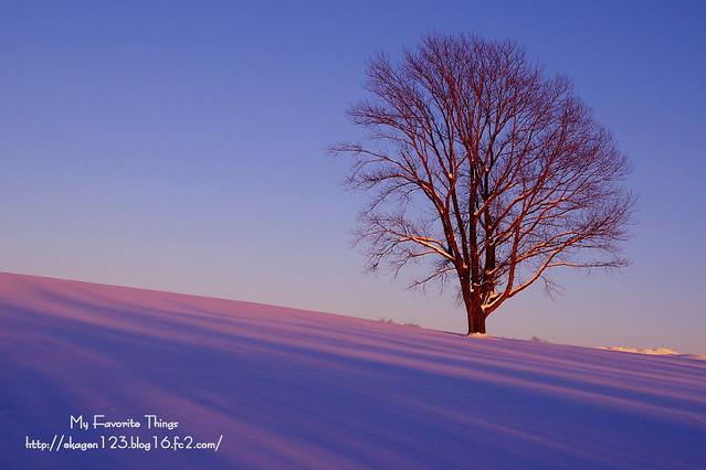2013 冬①