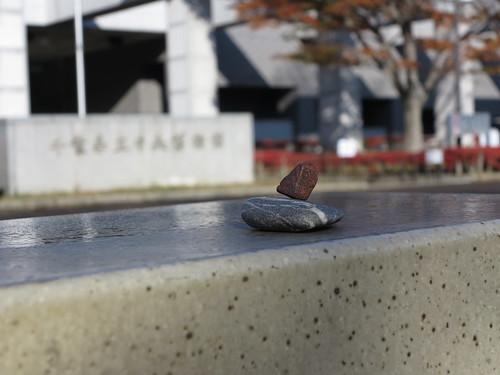 來自美國霍河雨林的許願石,這次來到了日本,要找音之景。攝影:范欽慧