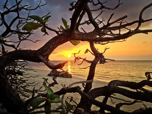 trip travel sunset beach beautiful mobile japan landscape nippon whitesand giappone nihon yoron yoronisland yoronto italianeography