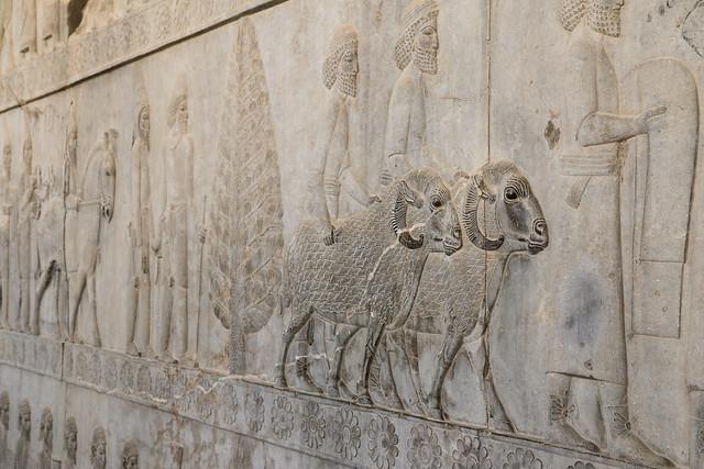 Relief of the eastern stairs of the Apadana, Persepolis, Iran ペルセポリス遺跡、アパダーナ東階段の羊のレリーフ