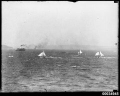 Three sloops racing near a ferry in Sydney Harbour