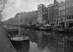 Amsterdam Fog