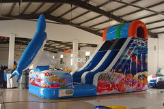 Dolphin jumping inflatable water slide-02