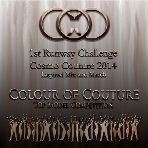 COC 1st Runway Challenge 2014
