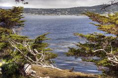 Pebble Beach from Point Lobos