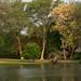 Golf course, The Makokla Retreat