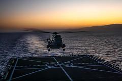 SH-3D landing at dusk