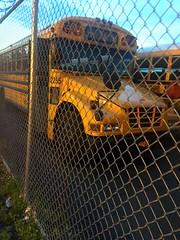 2005-2006 Bluebird Vision, Pioneer Transportation Corp, Bus#2255, Air Brakes, No air ride, no radio, no AC. (Ex Varsity Transit Inc)