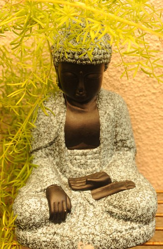 Textured statue of a black Buddha, with open hand, grasping knee, feet in lotus position, green plant, garden, South Bay Vajrayana, Cupertino, Silicon Valley, California, USA by Wonderlane