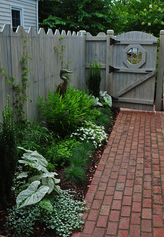 MacKinlay Garden (10)