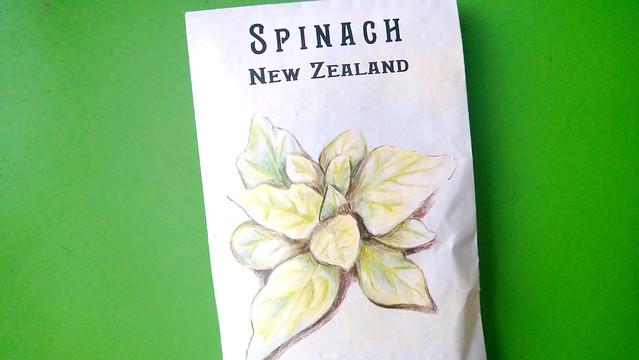 New Zealand SpinachWP_20130812_025