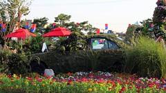 Carro matera Suwon day 1 (51)
