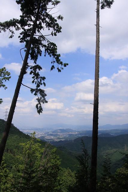 20130910岩湧山0029