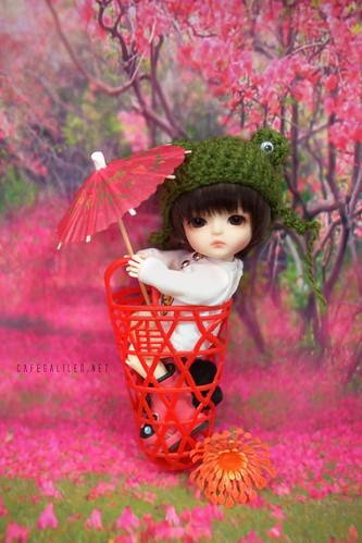 Mid-Autumn Festival!