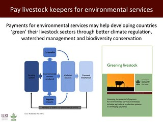Pay livestock keepers for environmental services
