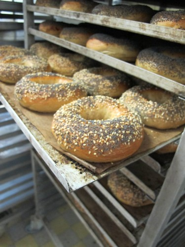 Bagel Boys, Oerlikon, Switzerland