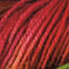 macaw pink-red-fuchsia