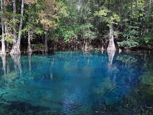 Manatee Springs in north central Florida near Chiefland.