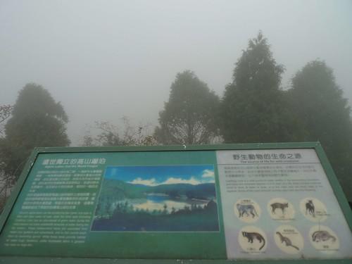 20130908-太平山-翠峰湖 (14)-H4118