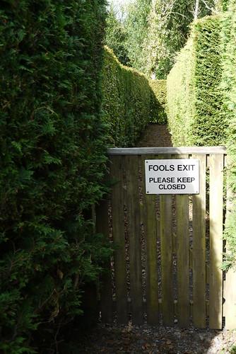 Fools Exit