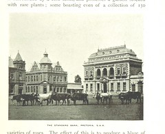 """British Library digitised image from page 291 of """"The Colony of Natal. An official illustrated handbook and railway guide"""""""
