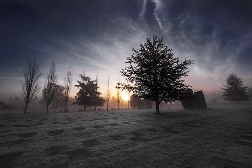 morning trees sunset sky sun mist color colour tree art beautiful fog clouds sunrise photography am nikon frost juan cemetary fineart wideangle dew nikkor rostworowski photographyforrecreationclassic